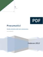 Guida Pneumatici Febbraio 2012