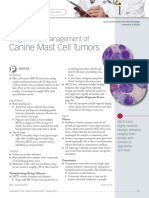 Canine Mast Cell Tumors
