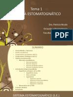 teoricoSISTEMA ESTOMATOGNATICO.pdf