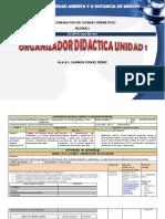 Organizador Didactico Unidad 1