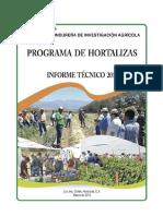 Inf Tec Hortalizas 2012