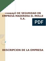 Trabajo de Seguridad en Empresa Maderera El Molle