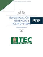Investigacion de Herencia y Polimorfismo