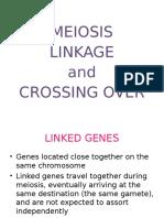 meiosislinkageandcrossingover-131010002552-phpapp02