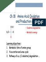 biochem Ch_18