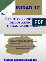Unidad 12 - Efectos Economicos de Los Aspectos Organizacionales