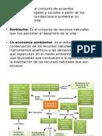 Economía Ambiental e Instrumentos Económicos
