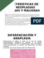 Características de Las Neoplasias