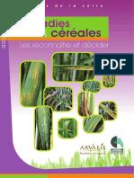 Maladies Des Céréales