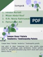 PP Jumper Knee