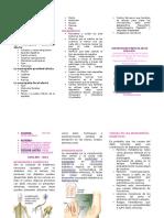 triptico de neurologia diabetica.doc