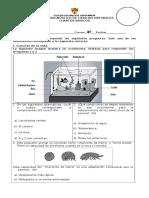 4° básico ciencias prueba diagnóstico pme 2017.docx