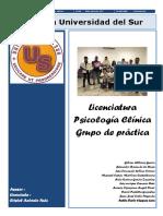 Practica Psicologia Clinica