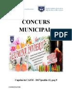 0 Concurs Municipal Lumina Invierii