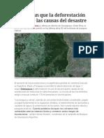 Deforestación Es Una de Las Causas Del Desastre