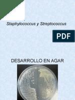 PRACTICA S Aureus y Streptococcus