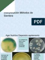 Metodos de Siembra y Metabolismo Bacteriano
