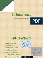 Coloraciones - Metodos de Siembra