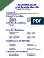Curriculum Vitae de Deibi Castillo.doc