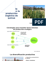 Desafios para producción organica Quinua vf.pptx