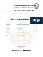 Informe musculo cardiaco