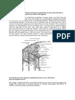 Biomechanics 2015.docx