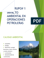 calidad ambiental  grupo 1.pptx