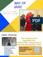 uwde agency report