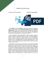 Simbiosis Organizacional Version en Español.