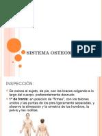 sistemalocomotor-130803083322-phpapp01