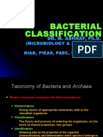 Bacterial Classification