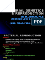 Bacterial Genetics & Reproduction