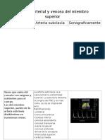 sistema arterial y venoso del miembro superior