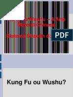 kung+fu.pdf