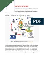 Pengertian Ascaris Lumbricoides