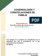 Psicogenealogia-y-Constelaciones-de-Familia.pdf