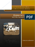 Edema de la ubre.UNAM.pdf