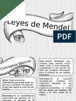 Leyes de Mendel- Expo - Copia