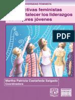 Perspectivas Feministas AA-web.pdf