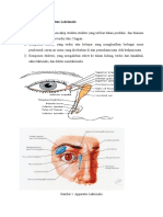 Tear Film patophysiology