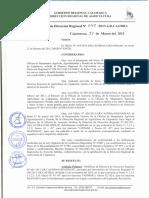 RDR N°-048-2013-GR.CAJ-DRA