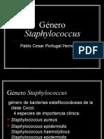 estafilococos 1