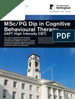 Cognitive Flyer