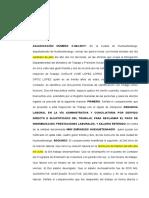 Acta Denuencia Falta Laboral