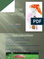 Mushroom Cultivation 6418339