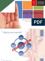 Voz Normal 2017