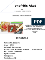 Lapsus Pielonefritis Akut erfian.pptx