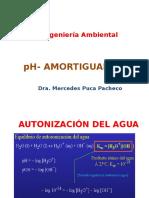 Clase 17 Ph Amortiguadores