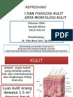 Anatomi Dan Fisiologi Kulit Dan Kelamin, Morfologi Kulit Fix