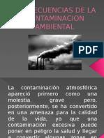 Consecuencias de La Contaminacion Ambiental